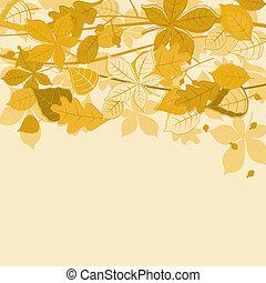 folhas, outonal, fundo