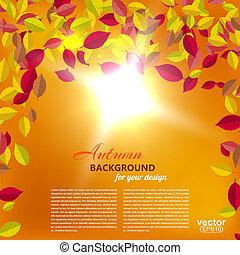 folhas, outono, vect, sun., fundo, laranja, queda