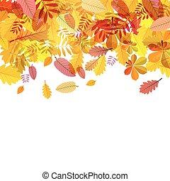 folhas, outono, vetorial, fundo, queda, branca