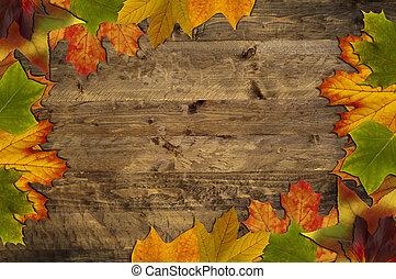 folhas, quadro, ligado, madeira