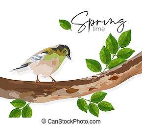 folhas, sentando, árvore, tempo, pássaro, verde, primavera, andorinha, ramo