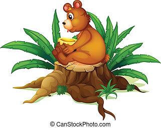 folhas, toco, urso, sentando