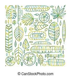 folhas, tropicais, seu, desenho, fundo