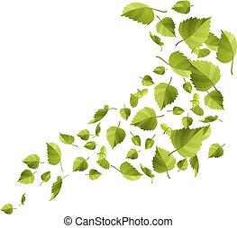folhas, verde branco, isolado