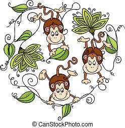 folhas, verde, três, macacos, penduradas