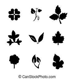 folhas, vetorial, jogo, ícone