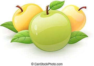 folhas, vetorial, maçã verde, frutas