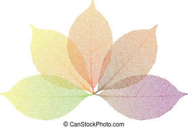 folhas, vetorial, outono