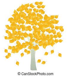 folhas, vetorial, vidoeiro, fundo, outono, árvore