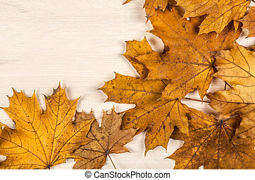 foliage of autumn leaves on a wooden background