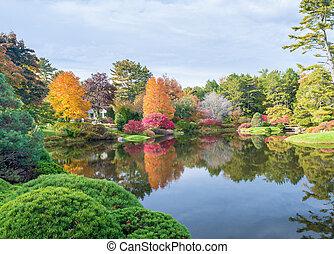 Foliage vegetation over a lake in autumn