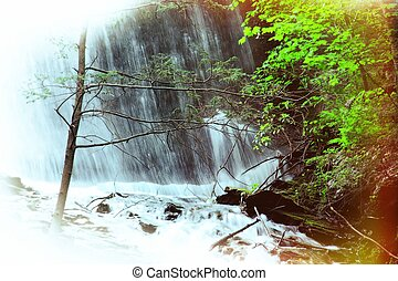 Foliage Waterfall - A waterfall in the woods with green...