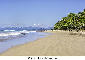 folktom, strand