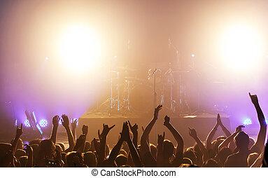 folla, a, concerto
