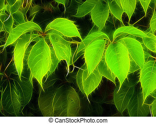 follaje colorido