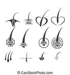 follicle cabelo, desenho, tratamento