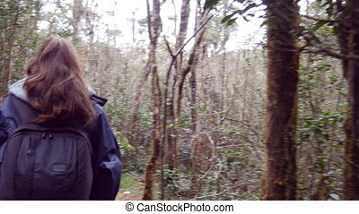 Follow to female tourist with backpack walking on the tropical wet forest. Young girl in raincoat going on wood trail during travel. Hiking woman stepping in jungle path. Rear back view