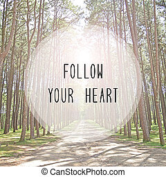 Follow your heart text