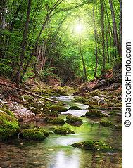 folyó, mély, erdő, hegy