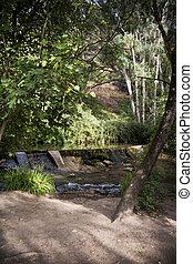 folyó parkosít