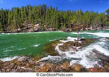 folyó, yellowstone, zúgó