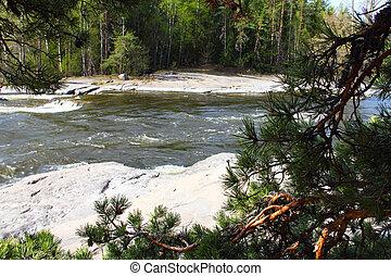 folyó, zúgó, és, sóvárog, elágazik