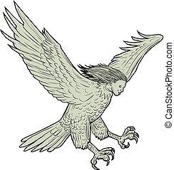 foncer, harpy, dessin
