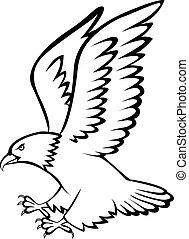 foncer, tatouage, aigle