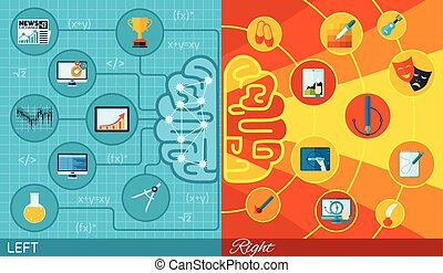 fonction, cerveau, droit, gauche