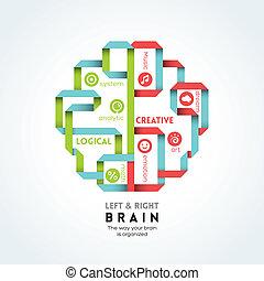 fonction, cerveau, droit, illustration, gauche