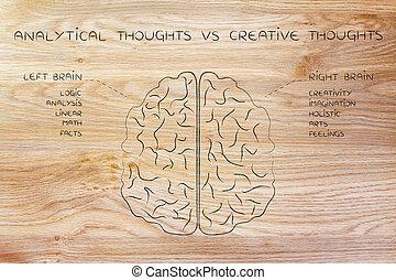 fonction, droit, descriptions, créatif, cerveau, vs, analytique, gauche