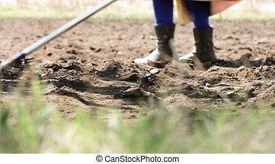 fonctionnement, champ, agriculteurs, cultures