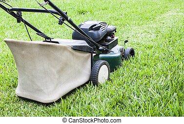 fonctionnement, faucheur, yard, pelouse, vert