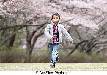 fonctionnement garçon, japonaise
