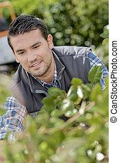 fonctionnement, jardinier