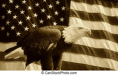 fond, américain, sépia, aigle, drapeau