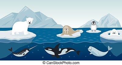 fond, animaux, arctique, caractère