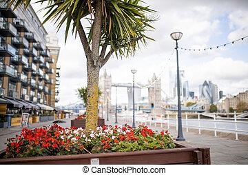 fond, arbre, cityscape, petit, paysage, fleurs rouges, vue