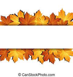 fond, automne