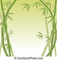 fond, bambou