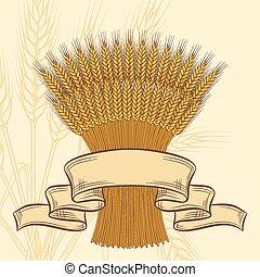 fond, blé, jaune, mûre, oreilles