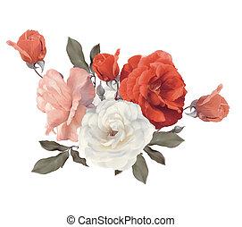 fond, blanc, aquarelle, roses