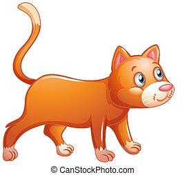 fond, blanc, chat orange, mignon