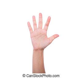 fond blanc, isolé, main humaine