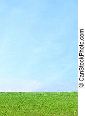 fond, bleu ciel, vert, vertical, herbe