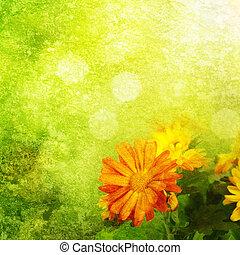 fond, chrysanthème, floral