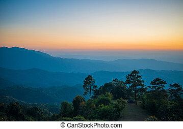 fond, coucher soleil, nature, beau