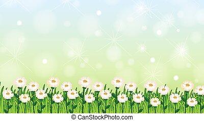 fond, fleurs, gabarit, herbe verte, conception
