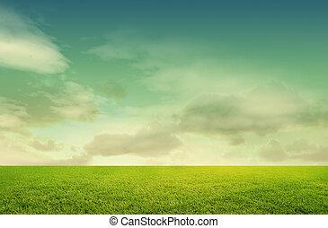 fond, herbe, isolé, blanc vert