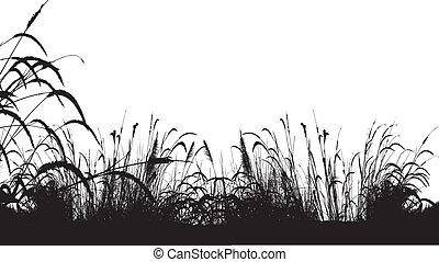 fond, herbe, silhouette